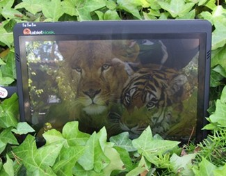 Sahara i500 Tablet in the sun