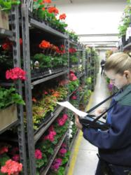 Motion F5v Tablet PC at United Flower Growers