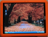 Orange tablet pc